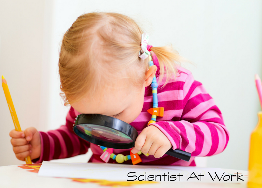 Scientific Thinking Starts In The Toddler Years